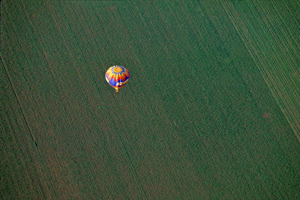 An aerial of a colored hot-air balloon soaring above farmland near Val Vista in Arizona.