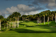 A general view of 14th hole Par 4, Apes Hill Club, St James, Barbados. Designed by Landmark Land Company. Picture Credit / Phil Inglis.