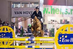 De Winter Jeroen, BEL, Nixon van't Meulenhof<br /> PAVO Hengstencompetitie - Lier 201<br /> © Hippo Foto - Dirk Caremans<br /> 19/01/2019
