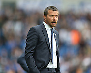 Head coach Slavisa Jokanovic during the Sky Bet Championship match between Brighton and Hove Albion and Watford at the American Express Community Stadium, Brighton and Hove, England on 25 April 2015.