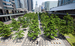 Modern urban landscaping with trees in park located between rows of skyscrapers in Shinagawa in central Tokyo Japan