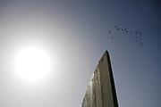 """A flock of birds fly past the eight-meter-high concrete separation wall in Abu Dis. Israel began building the current form of concrete slabs of separation barriers since 2003 to protect Israeli citizens from terrorists attacks such as suicide bombings. On February 18, 2004, The International Committee of the Red Cross stated that the Israeli barrier """"causes serious humanitarian and legal problems"""" and goes """"far beyond what is permissible for an occupying power""""."""