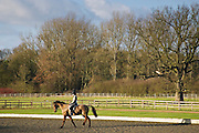 Young woman rides a Cleveland Bay Cross Thoroughbred horse, Oxfordshire, United Kingdom.