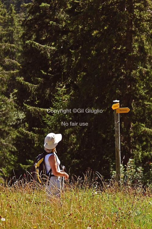 Suisse, Canton de Bern dans la région du Haut-Simmental, alpages sur Wispile, randonnée vers vallée et lac de Lauenen // Switzerland, Bern canton, Hight-Simmental region, Pastures on Wispile, hikking to Lauenen valley and lake, MODEL RELEASE OK, ref : SNL05