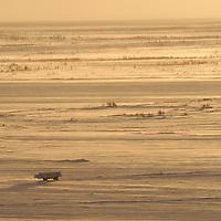 Tundra buggy makes its way back to Churchill from Gordon Point