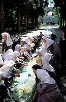 Bagh e Fin garden - Kashan - Iran