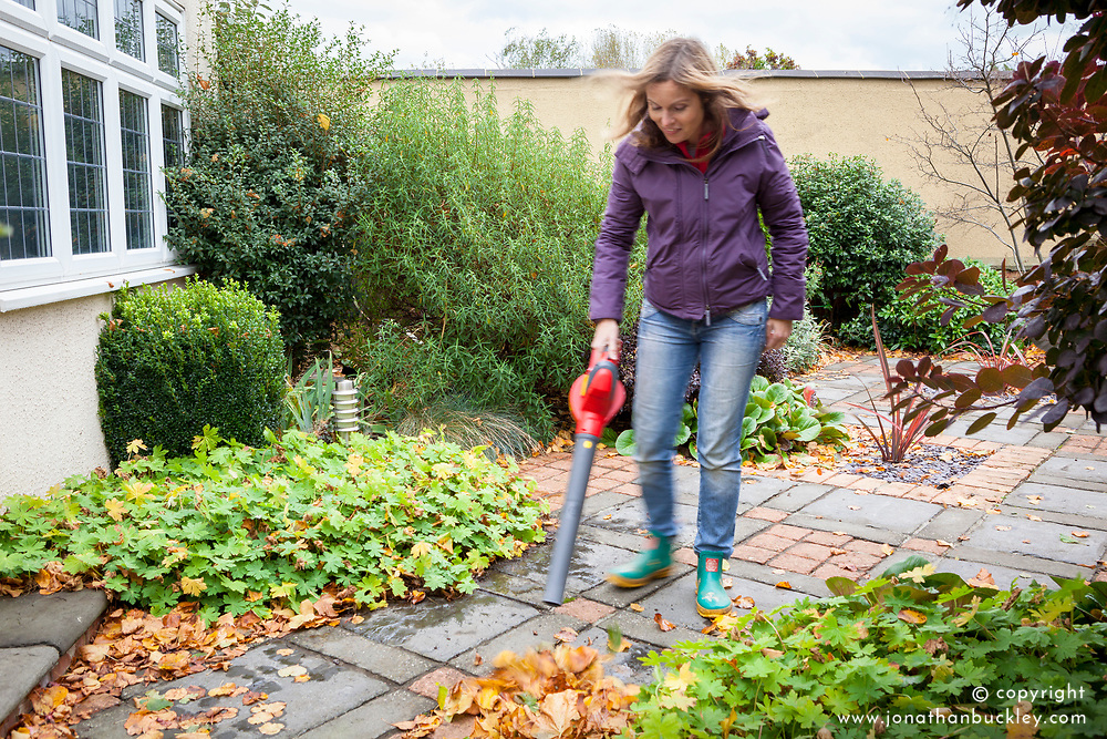 Using a leaf blower to gather up leaves from a patio
