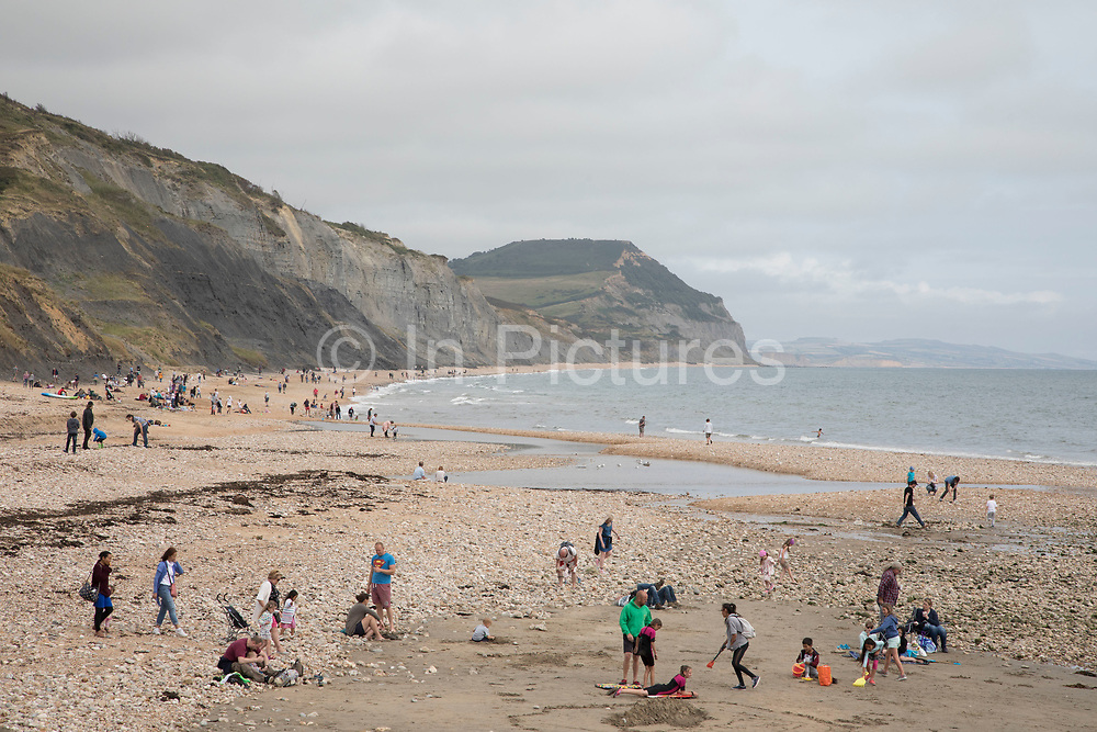 People enjoying the seaside searching for fossils on the beach at Charmouth, Dorset, England, United Kingdom. Charmouth is a village and civil parish at the mouth of the River Char in West Dorset, England and is part of the Jurassic Coast. The Jurassic Coast is a World Heritage Site on the English Channel coast. The site spans 185 million years of geological history, coastal erosion having exposed an almost continuous sequence of rock formation covering the Triassic, Jurassic and Cretaceous periods.