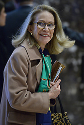 Kathleen White, director of the Armstrong Center for Energy and the Environment at the Texas Public Policy Foundation, is seen in the lobby of the Trump Tower in New York, NY, on November 28, 2016. (Anthony Behar / Pool)