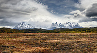 The Cordillera del Paine rises behind the fire ravaged earth - Torres del Paine National Park, Chile.