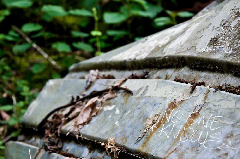 An abandoned boat in the forest of Discovery Park, Seattle, Washington.  Photo by William Byrne Drumm.