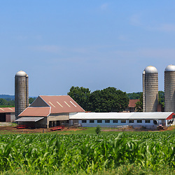 Bart, PA - June 15, 2011: Summer sunshine on a large working farm in southern Lancaster County.