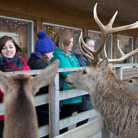 VisitScotland Pupil QTA's