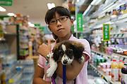 Daegu/South Korea, Republic Korea, KOR, 03.10.2009: Shopping with the puppy in the South Korean city of Daegu.