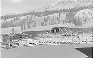 """RGS loading sheep at stock pens in tail of wye at Lizard Head.<br /> RGS  Lizard Head, CO  Taken by Richardson, Robert W. - 9/26/1951<br /> In book """"Rio Grande Southern, The: An Ultimate Pictorial Study"""" page 144<br /> Companion photo at RD135-072."""