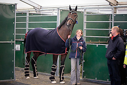 Eilberg Maria (GBR) - Two Sox<br /> Departure of the horses from Liege Airport to Lexington<br /> Alltech FEI World Equestrian Games - Kentucky 2010<br /> © Dirk Caremans