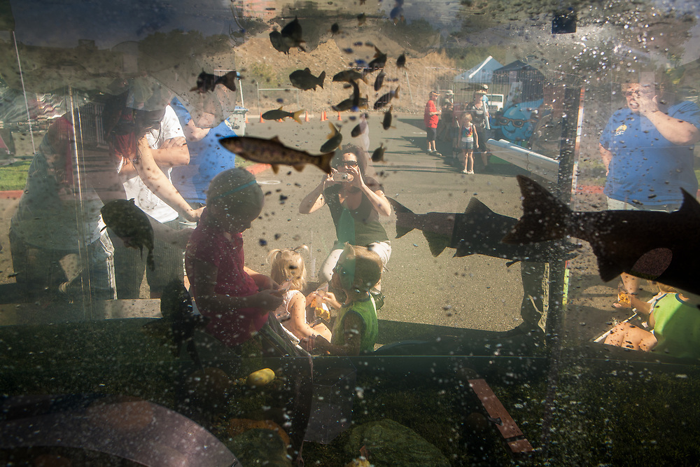 """Children pose for a picture in front of a mobile aquarium during the 2009 Salmon Festival at the Feather River Fish Hatchery in Oroville, CA. Species such as salmon and steelhead have become symbols of the environmental and conservation movements, who are in turn mocked by the agricultural industries through slogans such as """"fry a fish, feed a farmer."""" September 26, 2009."""