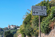 Italy, Cinque Terre, townscape of Corniglia. Directional road sign for cars and pedestrians.