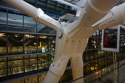 "Seen from the inside looking outwards, we see one of the giant 38 ton 'torso nodes' of Heathrow Airport's Terminal 5 roof structure. Developed by Arup to design the geometry of abutment steel, this engineering challenge needed to help support 50 ton rafters to made T5 the largest free-standing building in the UK. In the centre is the torso that sits on top of two feet with the wings splaying out to the window. The main architecture was created by the Richard Rogers Partnership (now Rogers Stirk Harbour and Partners) and opened in 2008 after a cost of £4.3 billion. Terminal 5 has the capacity to serve around 30 million passengers a year. From writer Alain de Botton's book project ""A Week at the Airport: A Heathrow Diary"" (2009)."