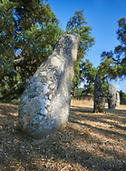 Pictures & images of prehistoric Copper age proto anthropomorphic standing stone statue Menhirs in the  Biru 'e Concas archaeolological site, Sorgono, Sardinia.<br /> <br /> If you prefer to buy from our ALAMY PHOTO LIBRARY  Collection visit : https://www.alamy.com/portfolio/paul-williams-funkystock/biru-e-concas-mehirs-sardinia.html<br /> Visit our PREHISTORIC PLACES PHOTO COLLECTIONS for more   photos  to download or buy as prints https://funkystock.photoshelter.com/gallery-collection/Prehistoric-Neolithic-Sites-Art-Artefacts-Pictures-Photos/C0000tfxw63zrUT4