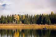 Fall colors on Rainy Lake, Montana