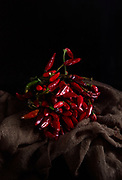 Still life with dry chili peppers in dark mood