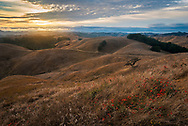 Sunset over rolling hills, Briones Regional Park, Contra Costa County, California
