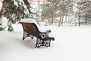 20170314_home_fire_snow_day_diane_duthie_
