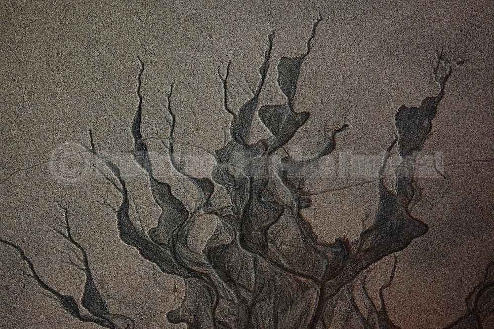 Kunst i sanden i fjøra