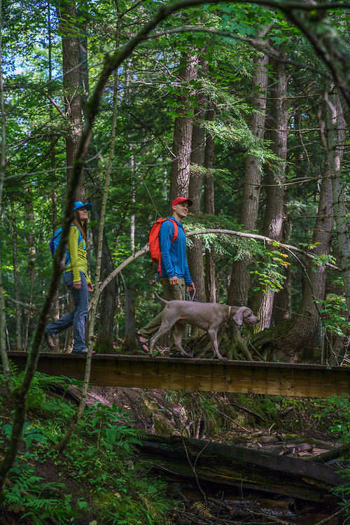 Hiking at the Yellow Dog River Community Forest in Marquette County, Michigan.