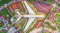 Aerial view of The unusual colorful Dubai Miracle Garden, United Arab Emirates.