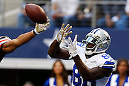 ARLINGTON, TX - NOVEMBER 18:  Dez Bryant #88 of the Dallas Cowboys signals catches a touchdown pass against the Cleveland Browns at Cowboys Stadium on November 18, 2012 in Arlington, Texas.  The Cowboys defeated the Browns 23-20.  (Photo by Wesley Hitt/Getty Images) *** Local Caption *** Dez Bryant Sports photography by Wesley Hitt photography with images from the NFL, NCAA and Arkansas Razorbacks.  Hitt photography in based in Fayetteville, Arkansas where he shoots Commercial Photography, Editorial Photography, Advertising Photography, Stock Photography and People Photography