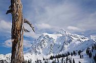 Mount Shuksan coverd in snow
