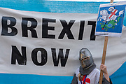 Ayoung girl wearing a medieval helmet holds a St Georges placard next to a blue and white Brexit Now banner outside Houses of Parliament on the 29th August 2019 in London in the United Kingdom.