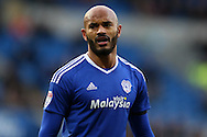 Frederic Gounongbe of Cardiff city looks on. EFL Skybet championship match, Cardiff city v Brighton & Hove Albion at the Cardiff city stadium in Cardiff, South Wales on Saturday 3rd December 2016.<br /> pic by Andrew Orchard, Andrew Orchard sports photography.
