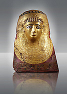 Ancient Egyptian case of the inner coffin of Nespamai depicting the goddess Nut. 500BC BC. Neues Museum Berlin AM 31213/2. .<br /> <br /> If you prefer to buy from our ALAMY PHOTO LIBRARY  Collection visit : https://www.alamy.com/portfolio/paul-williams-funkystock/ancient-egyptian-art-artefacts.html  . Type -   Neues    - into the LOWER SEARCH WITHIN GALLERY box. Refine search by adding background colour, subject etc<br /> <br /> Visit our ANCIENT WORLD PHOTO COLLECTIONS for more photos to download or buy as wall art prints https://funkystock.photoshelter.com/gallery-collection/Ancient-World-Art-Antiquities-Historic-Sites-Pictures-Images-of/C00006u26yqSkDOM