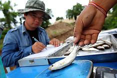 Lao Mekong Fish Ladders ACIAR