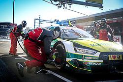 October 14, 2017 - Germany - Motorsports: DTM race Hockenheim-II, Saison 2017 - 9. Event Hockenheimring, GER, # 99 Mike Rockenfeller (GER, Audi Sport Team Phoenix, Audi RS5 DTM) (Credit Image: © Hoch Zwei via ZUMA Wire)