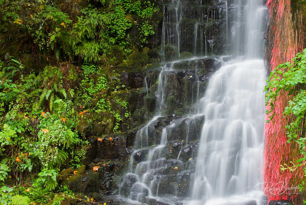 Coopey Falls, Columbia River Gorge National Scenic Area, Oregon
