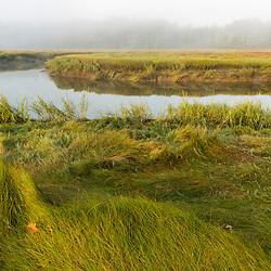 A salt marsh along the York River at the Smelt Brook Preserve in York, Maine.