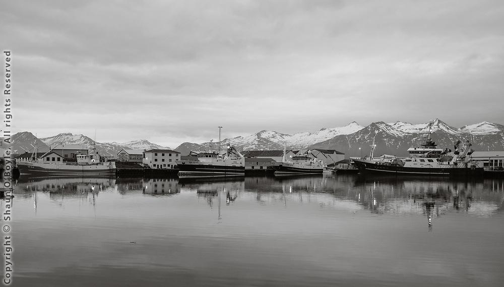Fishing boats at Hofn, Iceland