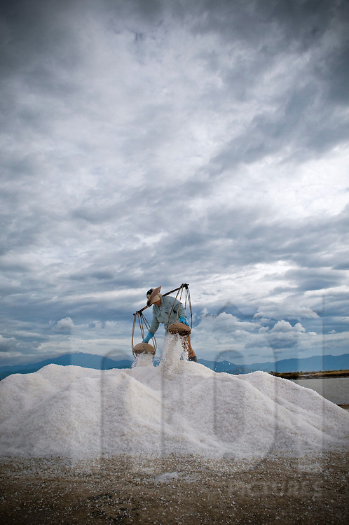 Vietnamese female worker on top of a salt heap, unloads her wicker baskets.  Khanh Hoa province, Vietnam, Asia