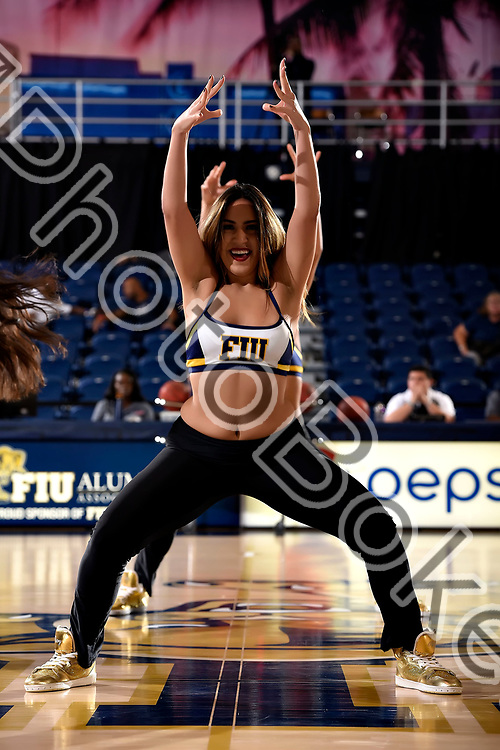 2017 November 19 - FIU Golden Dazzlers performing at Ocean Bank Convocation Center, Miami, Florida. (Photo by: Alex J. Hernandez / photobokeh.com) This image is copyright by PhotoBokeh.com and may not be reproduced or retransmitted without express written consent of PhotoBokeh.com. ©2017 PhotoBokeh.com - All Rights Reserved
