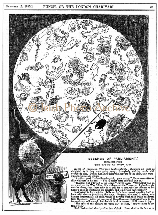 Essence of Parliament: Cartoon by Harry Furniss marking the opening of the first session of Parliament for 1883, showing the politicians as microbes in a drop of water. From 'Punch', London, 17 February 1883.  At this time public lectures were being given showing lantern slides of a drop of dirty water from river Thames seen under a microscope. Wood engraving .