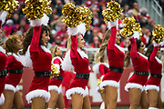 San Francisco 49ers Gold Rush performs during a NFL game against the Jacksonville Jaguars at Levi's Stadium in Santa Clara, Calif., on December 24, 2017. (Stan Olszewski/Special to S.F. Examiner)