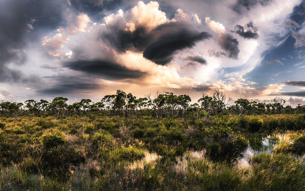 Dramatic sky over Hassell National Park, Western Australia