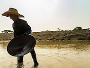 """01 APRIL 2016 - WANG NUEA, LAMPANG, THAILAND: A man carries his pan of rocks whole he looks for gold in the Mae Want. Villagers in the Wang Nuea district of Lampang province found gold in the Mae Wang (Wang River) in 2011 after excavation crews dug out sand for a construction project. A subsequent Thai government survey of the river showed """"a fair amount of gold ore,"""" but not enough gold to justify commercial mining. Now every year when the river level drops farmers from the district come to the river to pan for gold. Some have been able to add to their family income by 2,000 to 3,000 Baht (about $65 to $100 US) every month. The gold miners work the river bed starting in mid-February and finish up by mid-May depending on the weather. They stop panning when the river level rises from the rains. This year the Thai government is predicting a serious drought which may allow miners to work longer into the summer. The 2016 drought has lowered the water level so much that the river is dry in most places and people can only pan for gold in a very short stretch of the river.      PHOTO BY JACK KURTZ"""