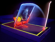 Glowing mouse trap sprung by rat.Black light