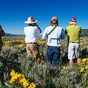 Searching for wildlife in Grand Teton National Park on a Teton Science Schools wildlife tour.(Greg Peck, Matthew Bart, Sean Baker, Maura Bushior, Katie-Cloe Stock, Tracy Logan)