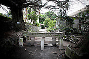 KUROKAMI, SAKURAJIMA, JAPAN, Eruption of the Sakura Jima. This torii of Kurokami village was buried in volcanic ash and cinder leave a slight upper eruption in 1914. May-2009